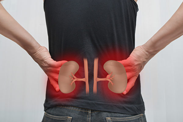 Unde sunt localizati rinichii si diferite cauze ale durerii de rinichi